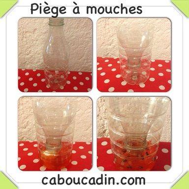 Comment fabriquer un piège à mouches   Piege a mouche, Astuces contre les mouches, Trucs et astuces