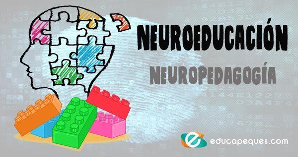 186 mejores imágenes de Neuroeducación | Neurociencia, Asociacion ...