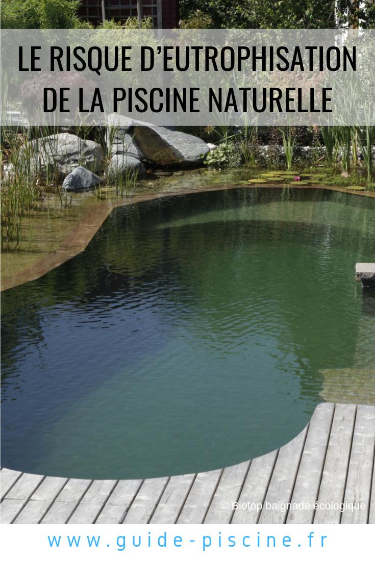 Bassin De Baignade Autoconstruction le risque d'eutrophisation de la piscine naturelle