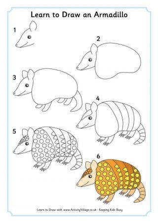 Learn To Draw An Armadillo | Desenhando com... en 2018 | Pinterest ...