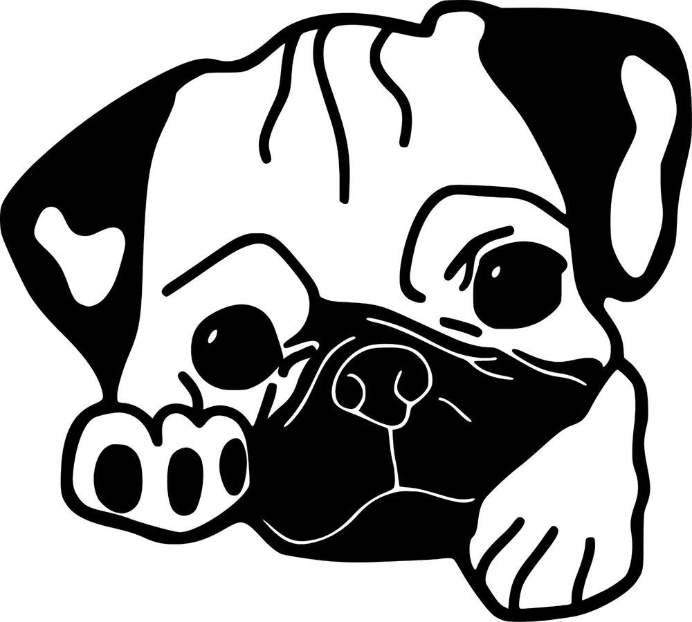 Pug Dog Puppy Animal Art Decal Wall Car Truck Window Vinyl Sticker 5 8 X 6 Ebay In 2021 Pug Dog Dog Coloring Page Pugs