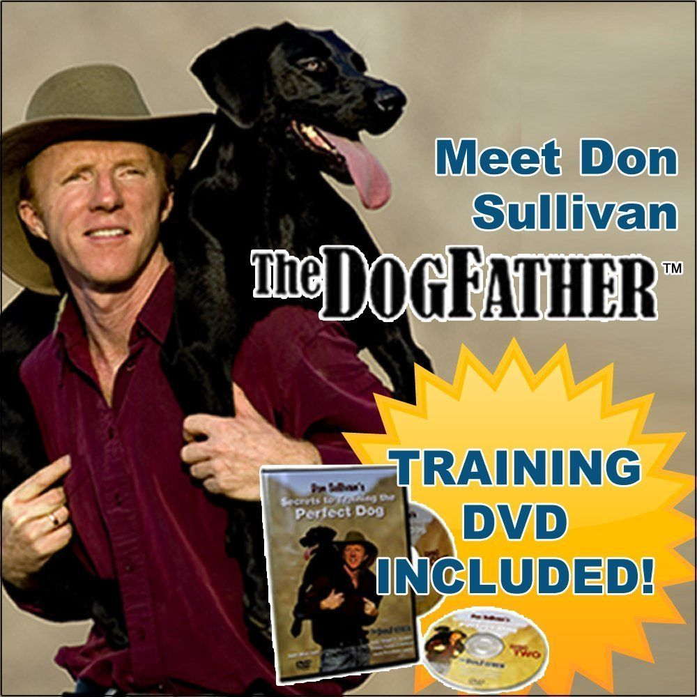 Don Sullivan The Perfect Dog Command Collar With Training Dvd Disk