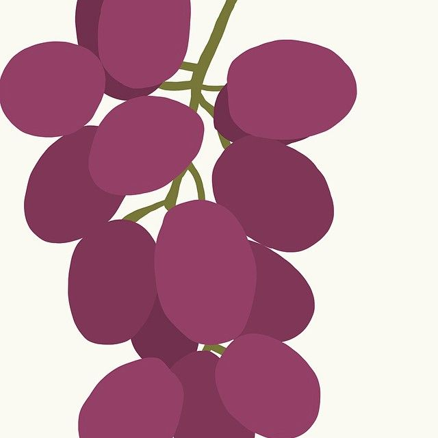 Instagram Photo By Jorey Hurley Oct 8 2014 At 3 33am Utc Grape Bunch Grape Drawing Grapes