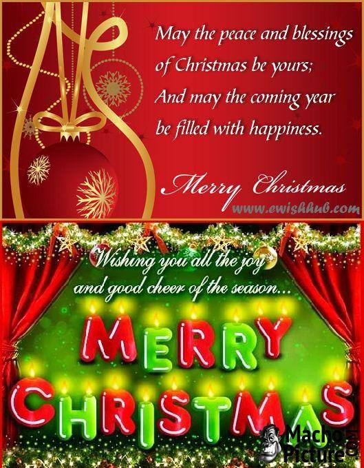 Free Christmas Greetings Message   Photo  Christmas Greetings