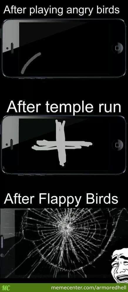 After Flappy Bird