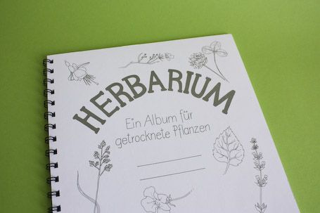 Herbarium Für Amy Album Diy Und Fun Learning