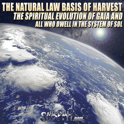 The Natural Law Basis of Harvest | The Spiritual Evolution of Gaia and All Who Dwell In the System of Sol | Stillness in the Storm