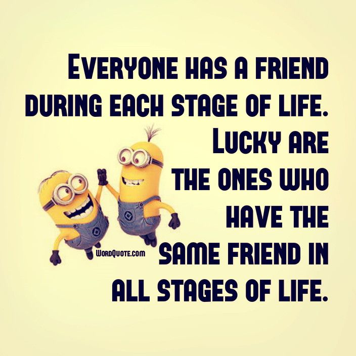 Everyone Has A Friend During Each Stage Word Quote Famous Quotes Words Quotes Funny Quotes Minion Jokes