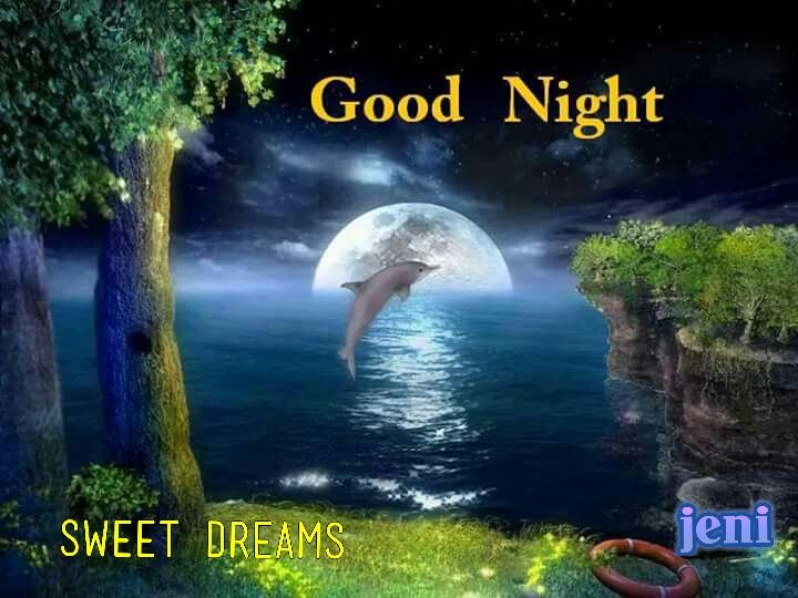 Good Night Sweet Dreams 3d Animation Wallpaper Beautiful Wallpapers Dolphins
