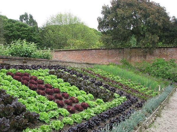 vegetable garden sloping garden ideas decorative gardens patio ideas ...