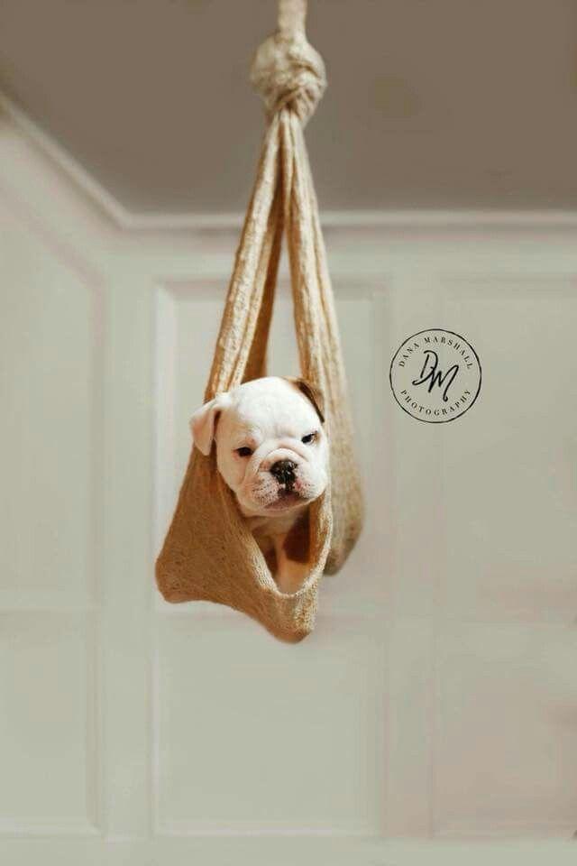 Hey Mom I M Still Hangin Around Up Here I Know I M All Dry