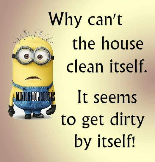 Cleaning Quotes Amusing 35 Funny Minion Wallpaper  Funny Minion Minions Minions And