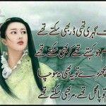 Hum tou paagal the marr bhi sakte the