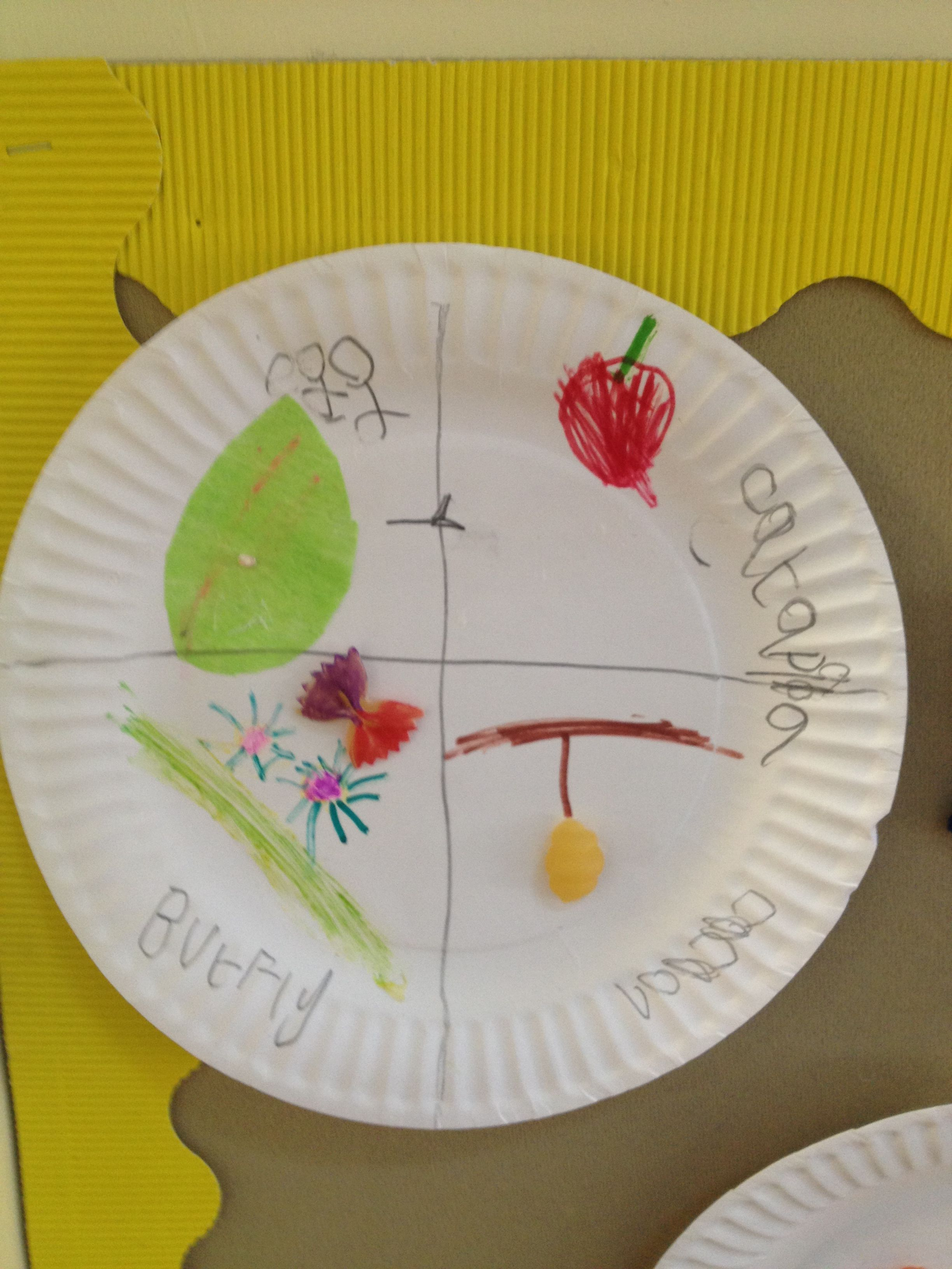 Caterpillar Butterfly Life Cycle Craft Plate