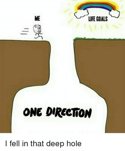 Goals Life And Memes Life Goals One Direction I Fell In That Deep Hole One Direction Memes One Direction Humor One Direction Facts