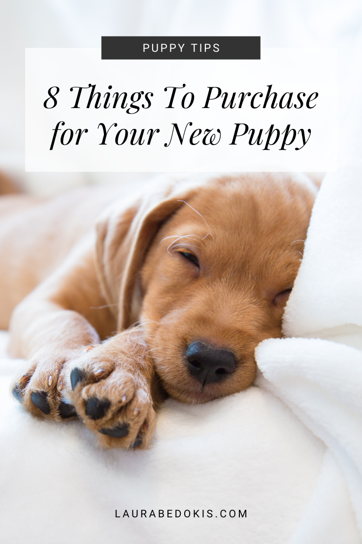 8 Things You'll Need for Your New Puppy #newpuppy