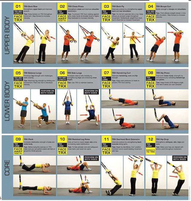 Suspension Training TRX Facts and Posters | Trx suspension ...