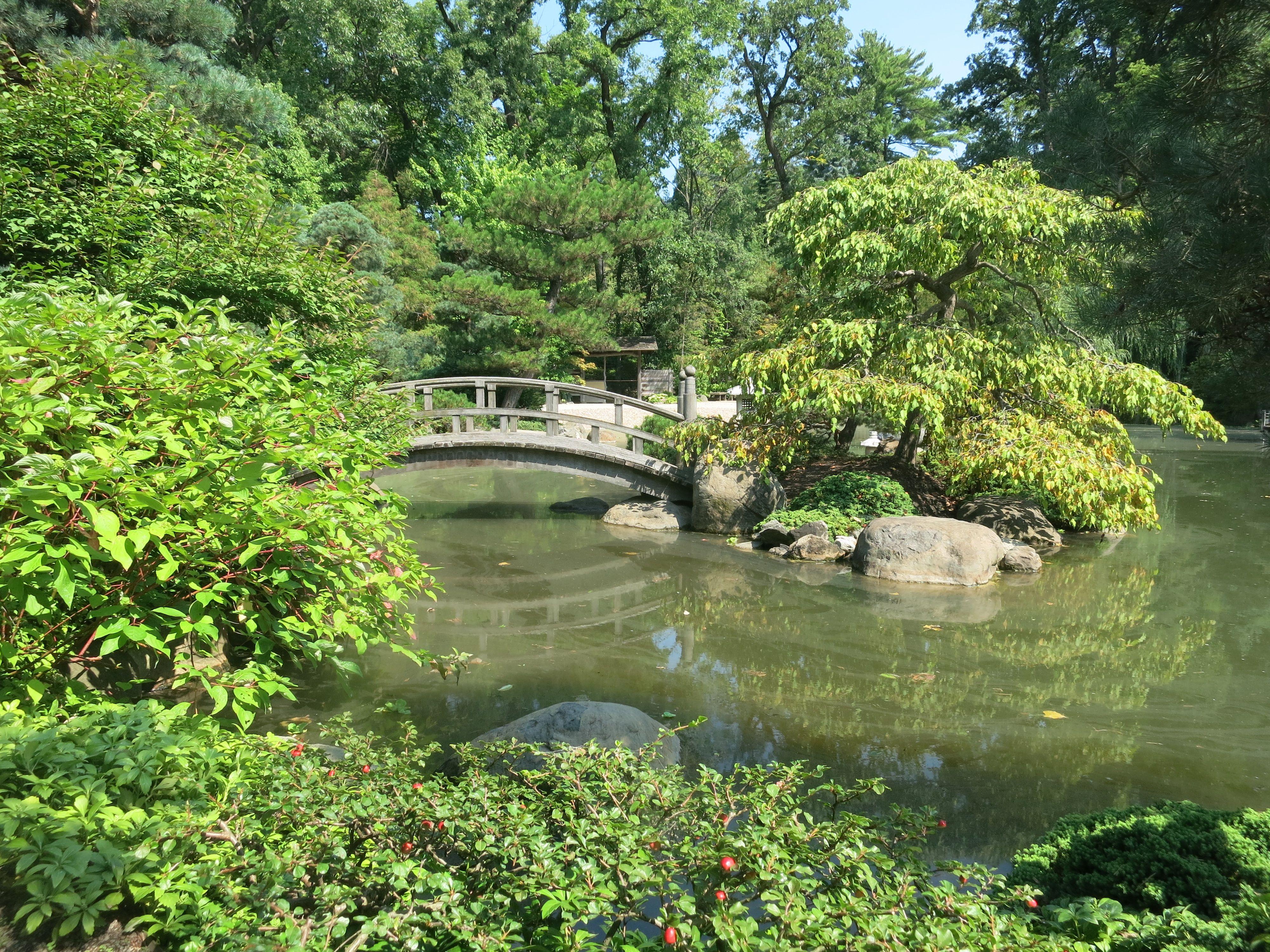 Anderson Japanese Garden, Rockford, Il Turtle Island