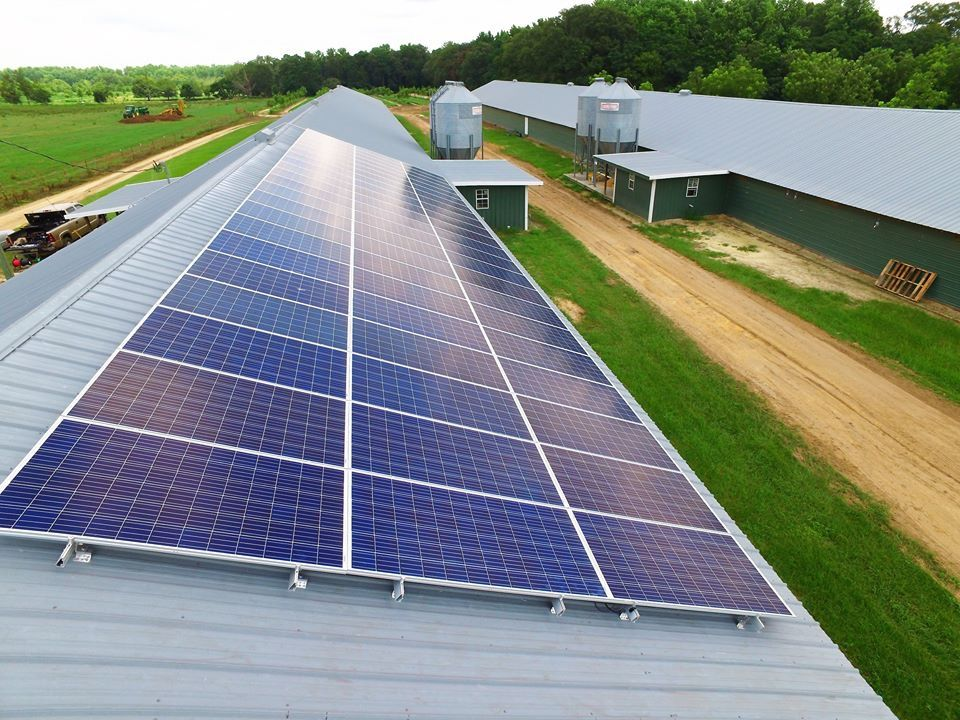 Solar And Agriculture Are A Perfect Match Coastal Solar Has Found The Niche That Fits For Farmers Solar Coastal Roof Solar Panel
