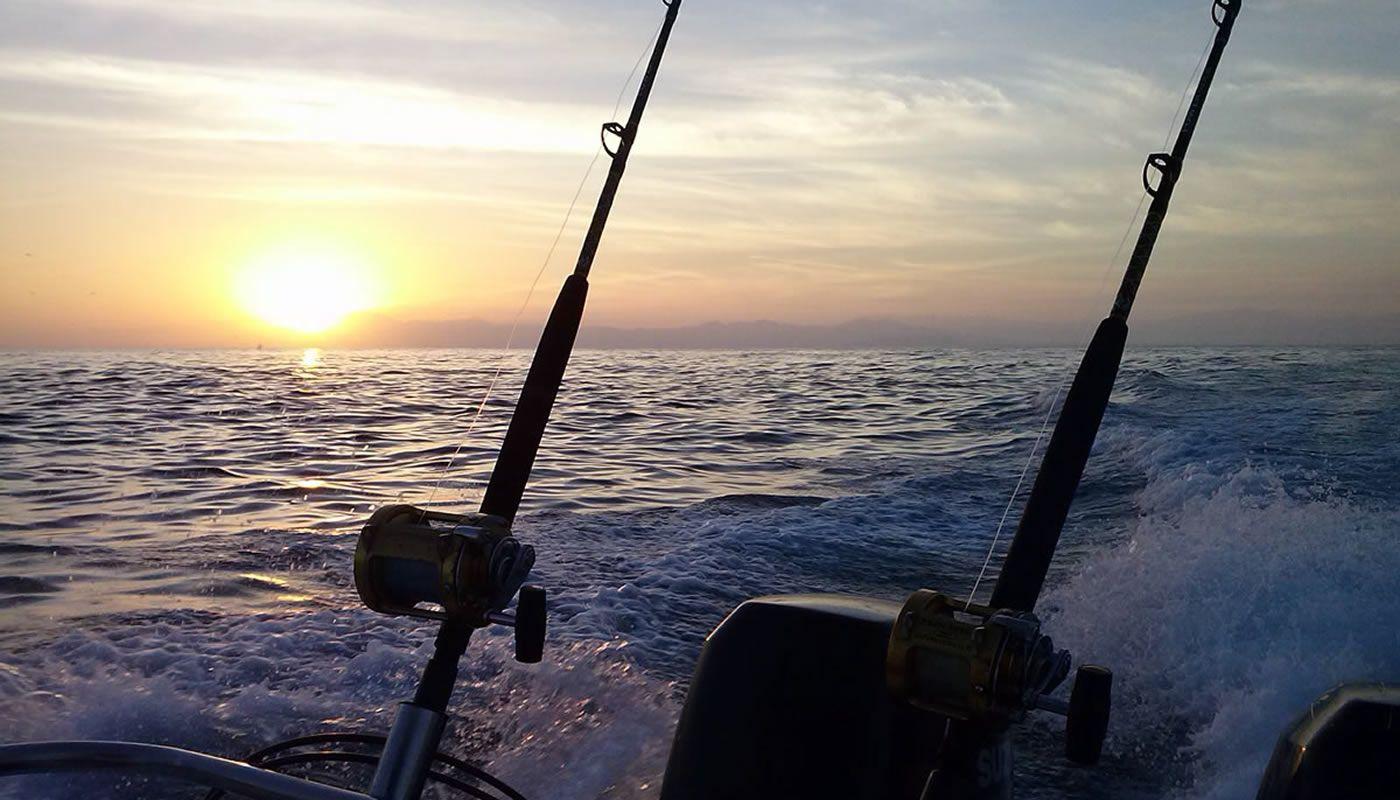 Pesca Deportiva en Puerto Vallarta & Riviera Nayarit