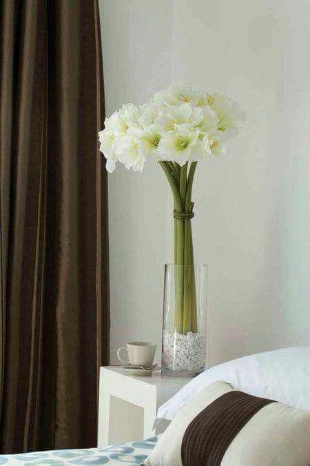 Azucena Flores, flores Pinterest Azucena y Flores - decorar jarrones altos