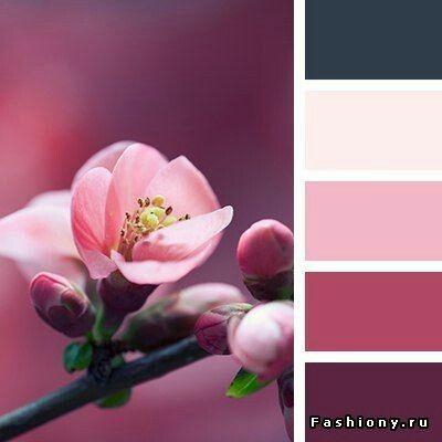 #Farbberatung #Stilberatung #Farbenreich mit www.farben ...