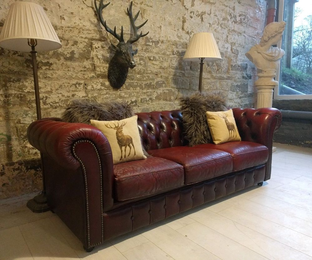 421 Chesterfield Leather vintage distressed 3 Seater Sofa oxblood brown  cigar