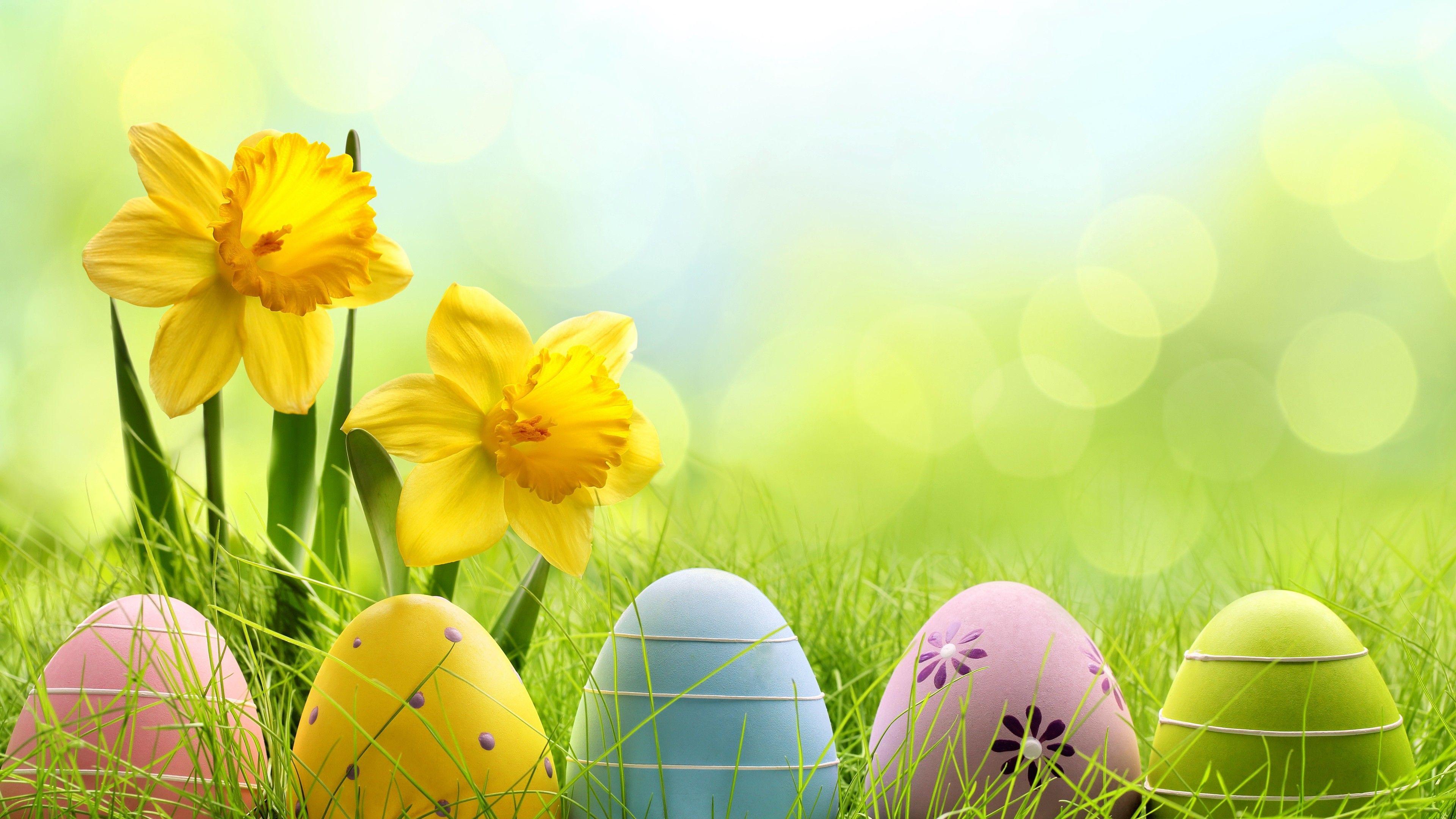Holiday Easter Egg 4k Eggs Wallpapers Easter Wallpapers Celebrations Wallpapers Happy Easter Wallpaper Easter Wallpaper Easter Backgrounds