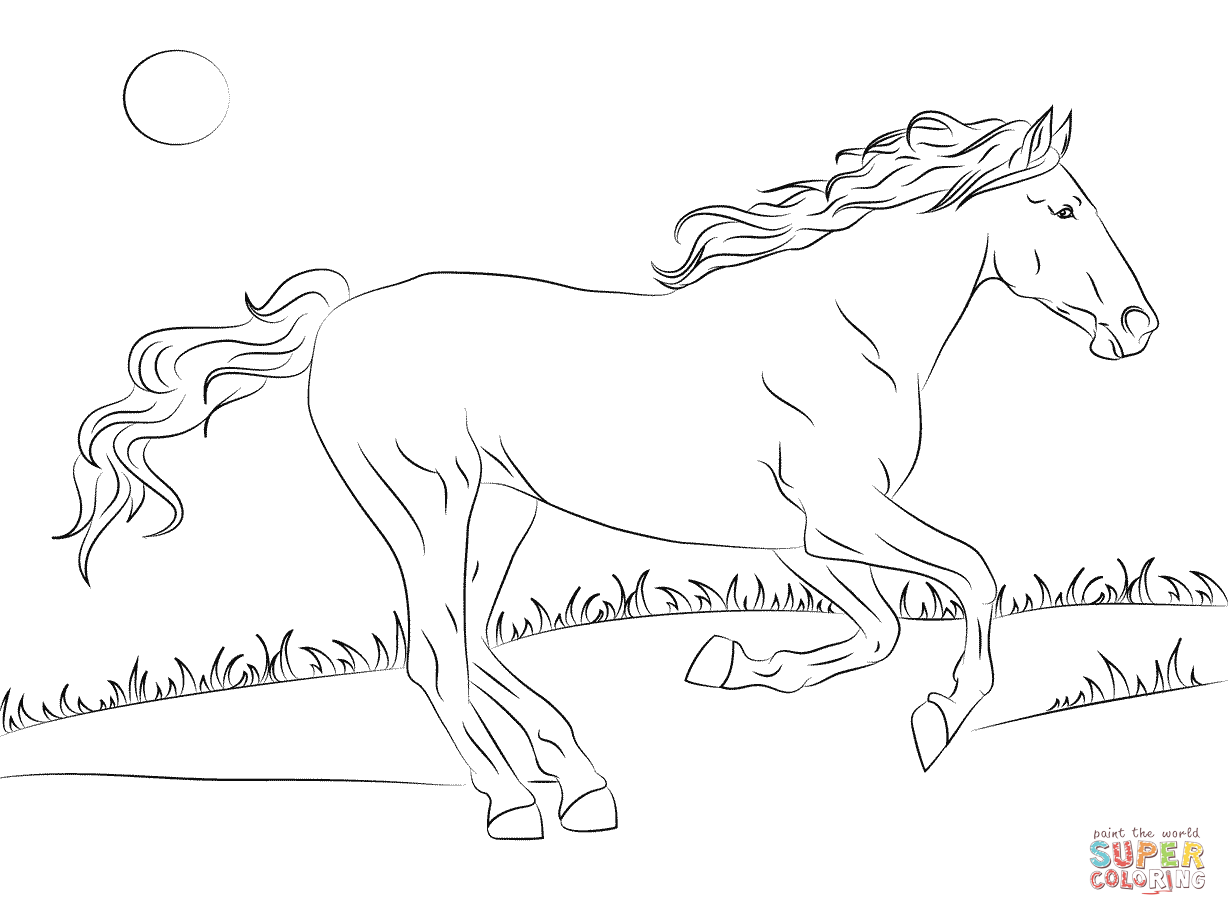 Horse Coloring Pages Supercoloring Display