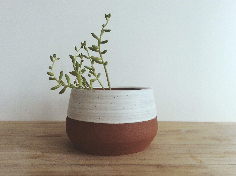 terra cotta planter indoor planter plants and pots succulent planter garden decor home decor white planter cactus planter