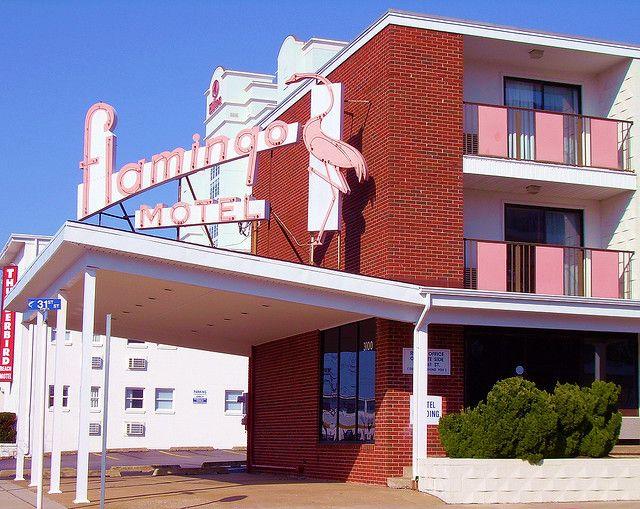 Flamingo Motel Ocean City Maryland By Whflood Via Flickr Ocean City Maryland Ocean City Ocean City Md