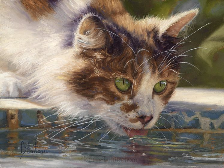 Domestic Animal Paintings - The Art of Lucie Bilodeau