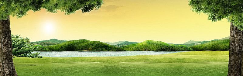 Green Trees Nature Landscape Background Landscape Background Background Green Trees