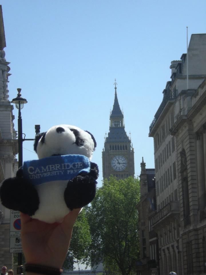 Another shot of Panda with Big Ben #London #Panda