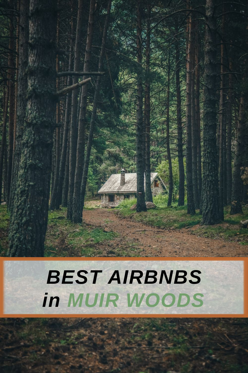 9 Coolest Airbnbs near Muir Woods, California: The