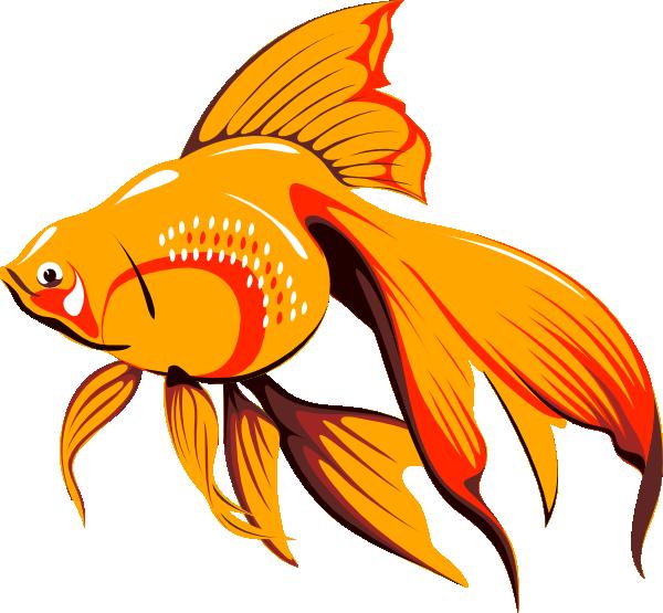 Fish Clip Art Golden Fish Clip Art Vector Clip Art Online Royalty Free Public Free Clip Art Golden Fish Clip Art