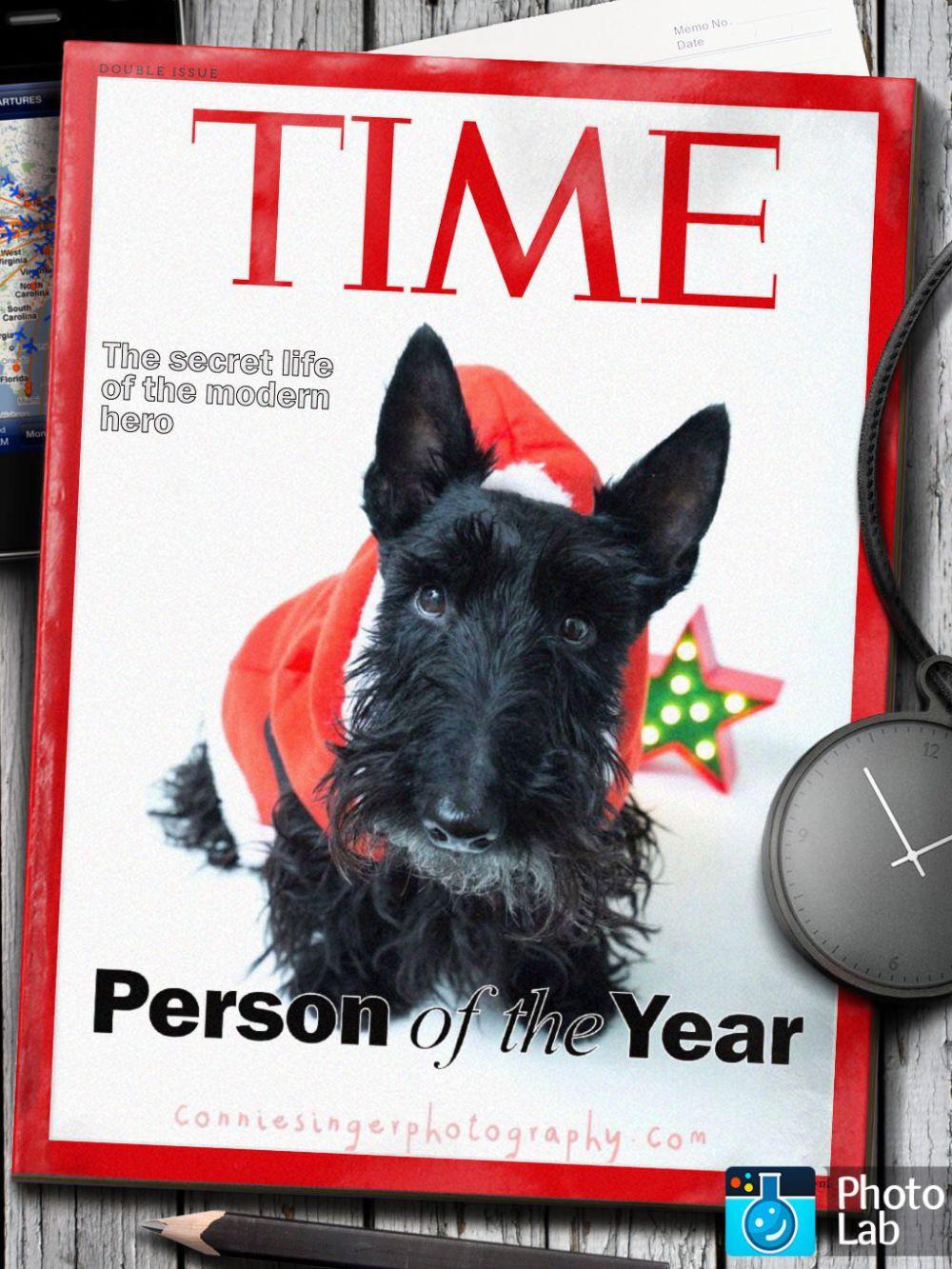 Happy Birthday Angus Scottie Terrier Scottie Dog Westie Puppies