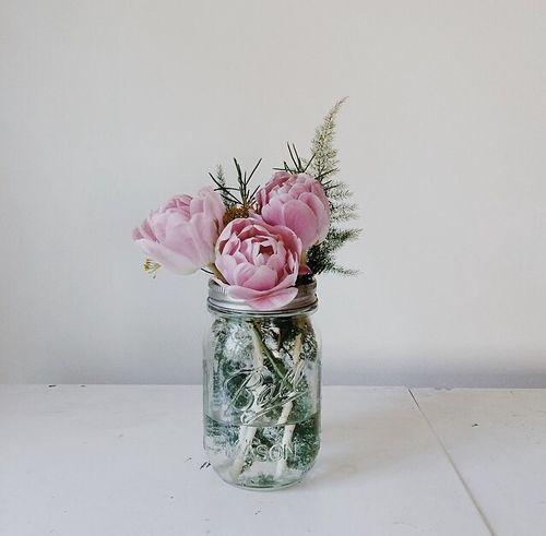 Photo (the tumblr of jessica rackley) | Blumenmuster, Gardening und ...