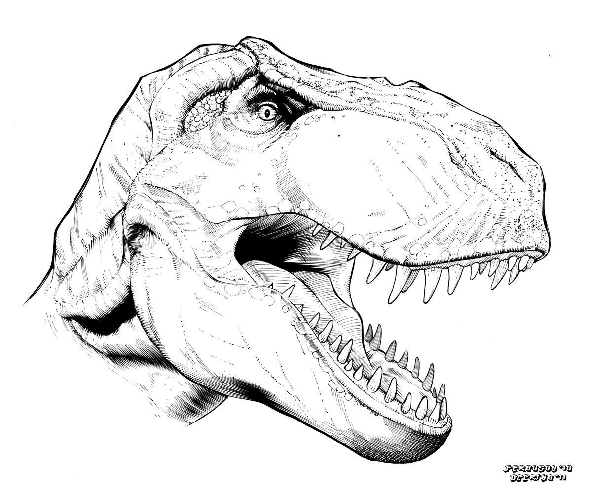 dinossauro rex desenho pesquisa google dinossauro pinterest