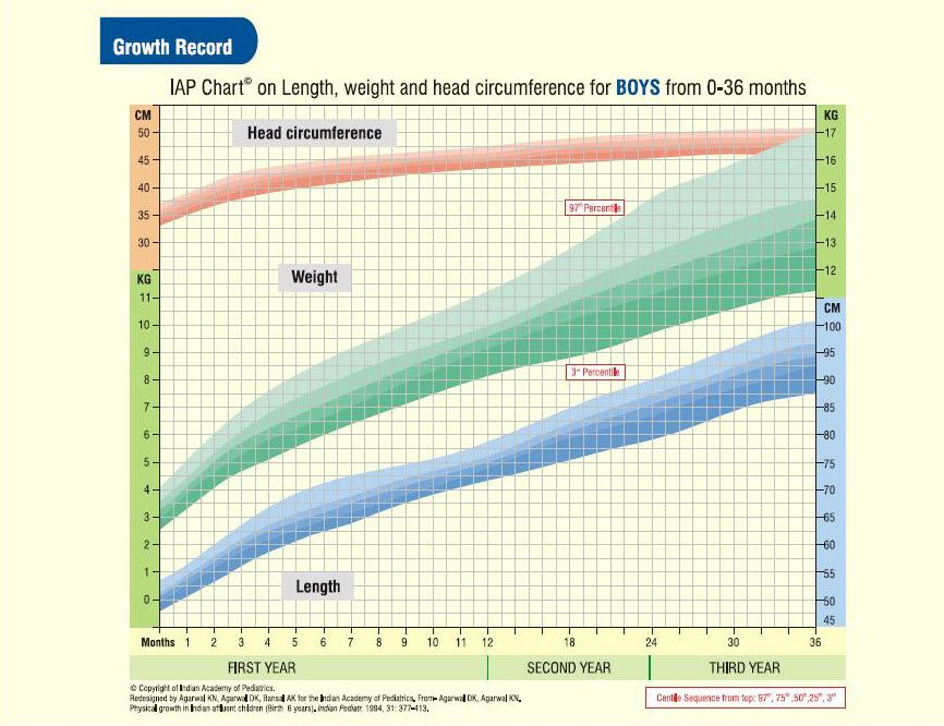 Indian Boys  Years HeightWeightHead Circumference Chart