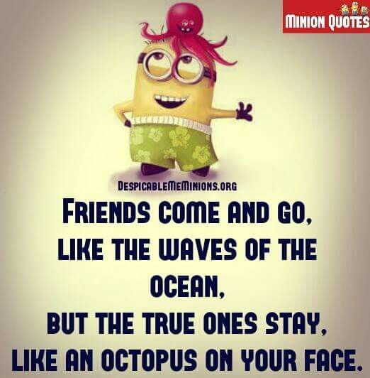 Friendship quotes, Friendship quotes funny, Friends quotes