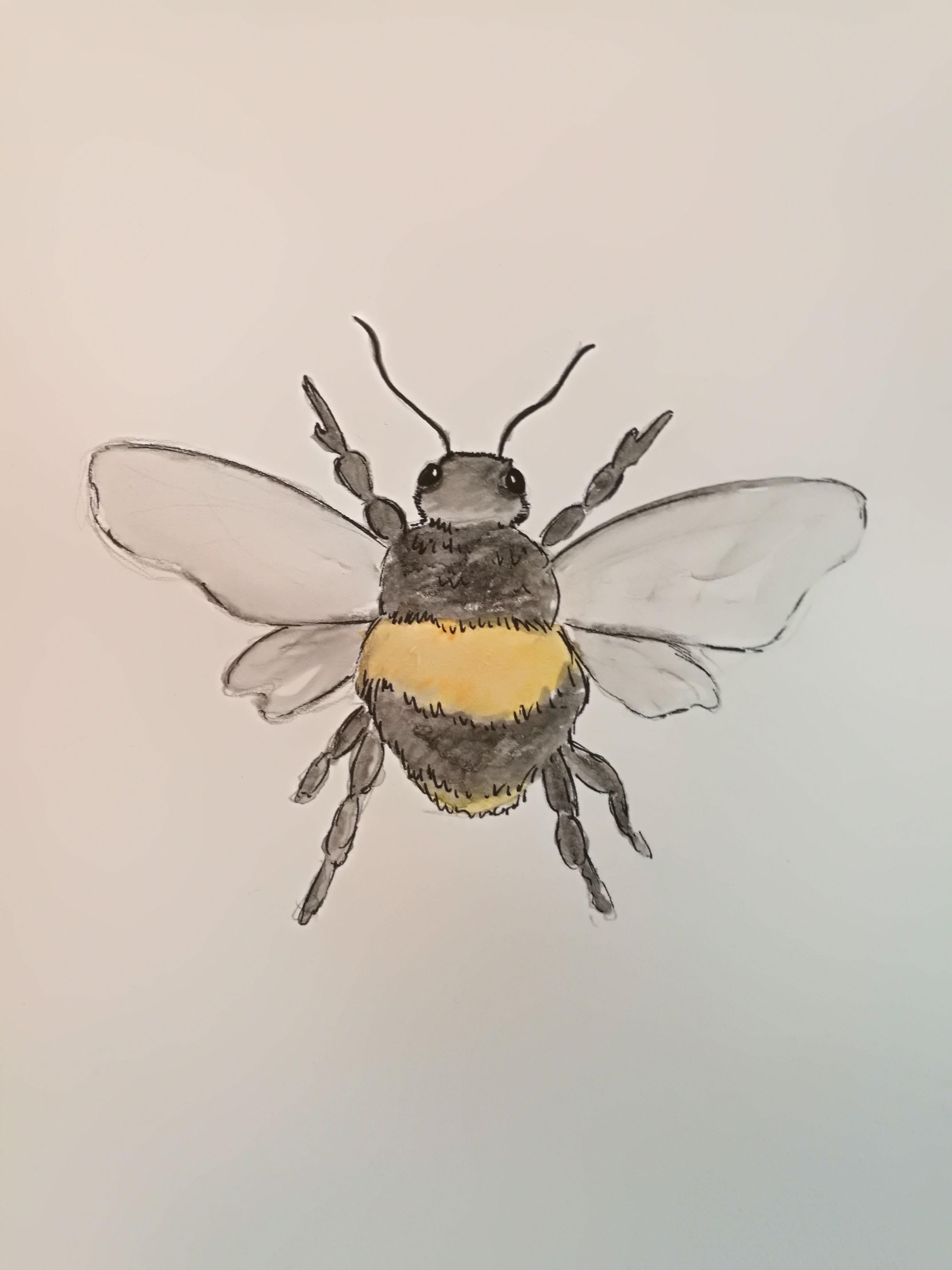 Bienen Karte Auf Papier Mit Aquarellstiften Gezeichnet Din A6