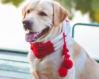 Photo of Bufanda tejida para perros para accesorios grandes para perros Bufanda azul para perros grandes