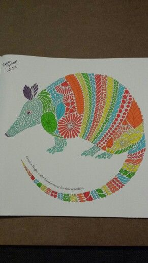Millie Marotta Armadillo Completed colouring pages Pinterest