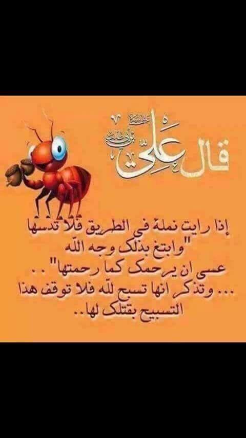والراحمون يرحمهم الله Arabic Quotes Ali Quotes Good Life Quotes