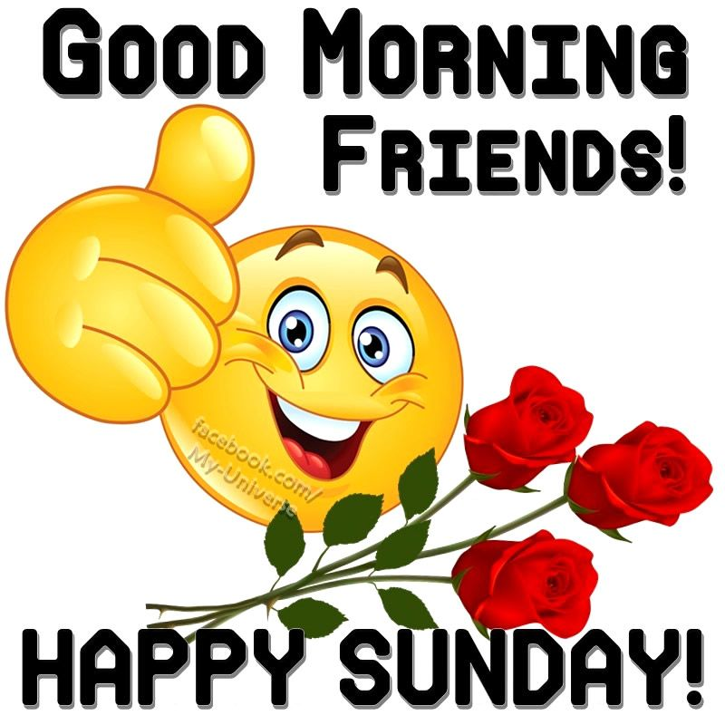 Good Morning Friends Happy Sunday Sunday Good Morning