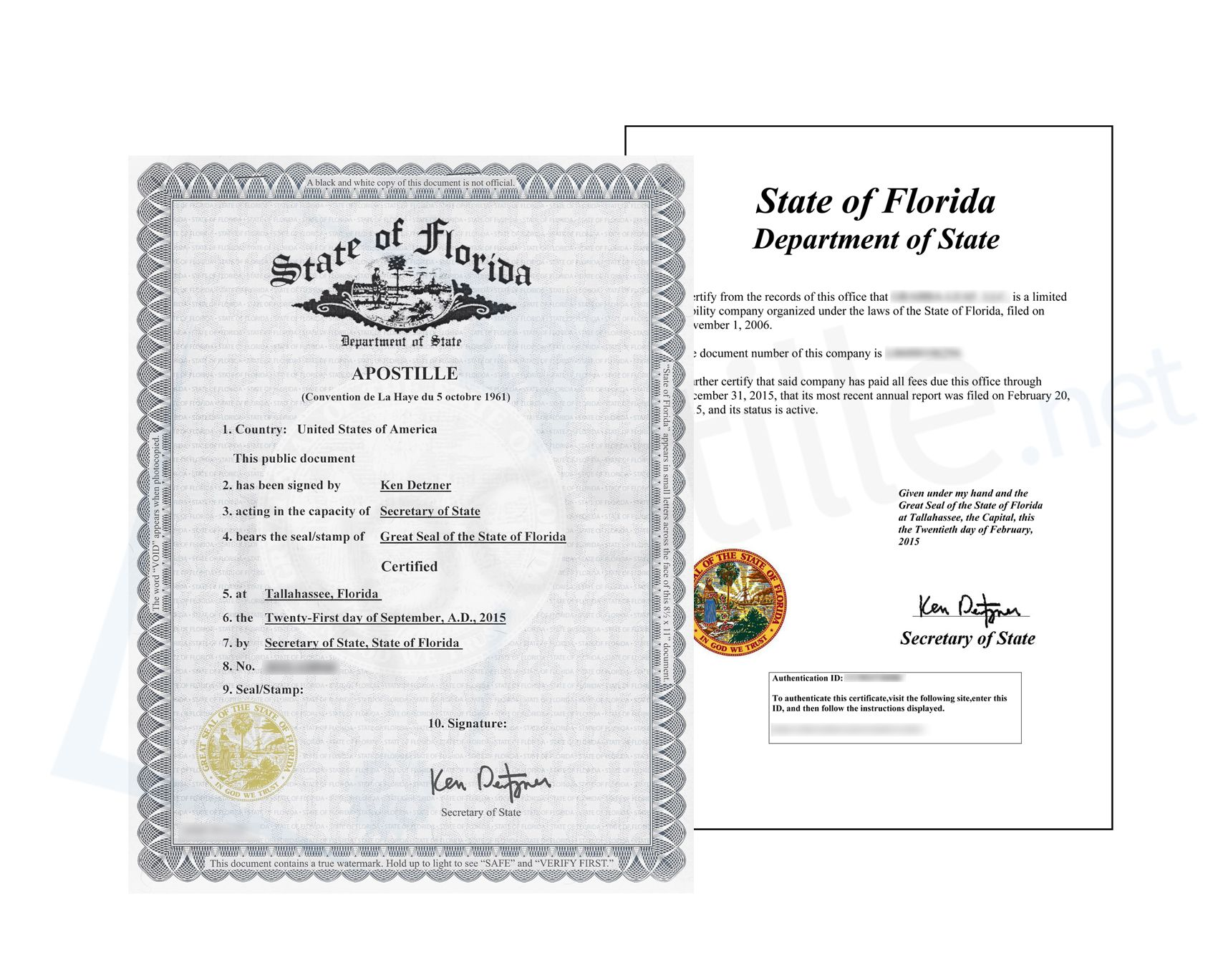 State Of Florida Apostille Of A Good Standing Certificate Both