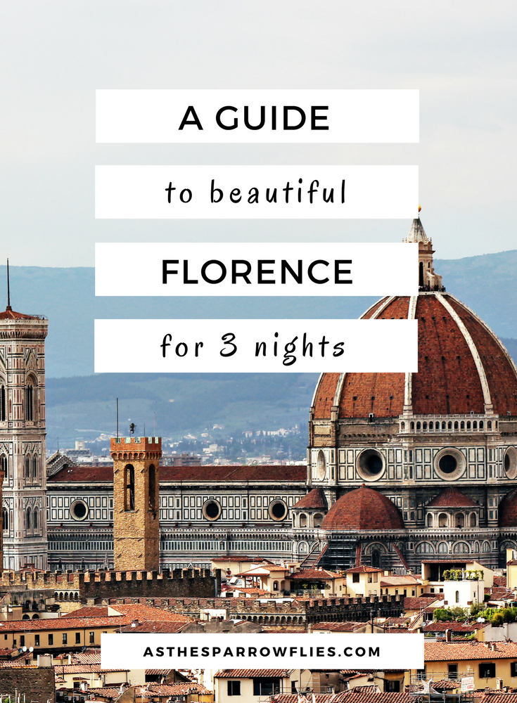 I waited 16 long years to visit this beautiful Tuscan city and it was worth the wait. Here's a full Florence City Break Guide to get the best from your trip