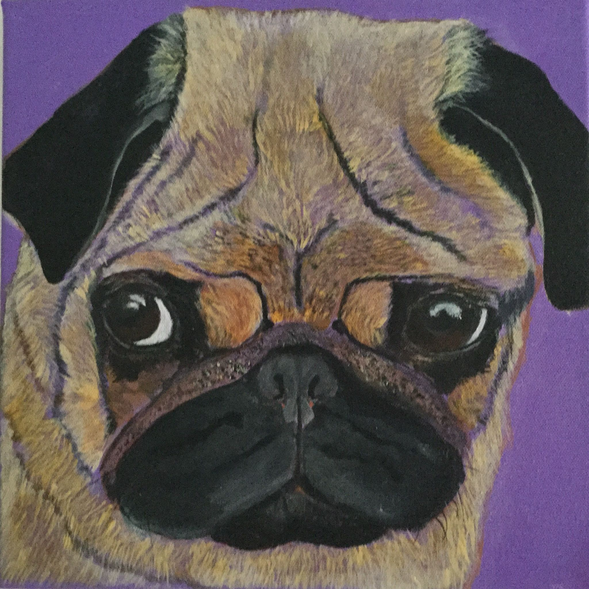 Pug Dog. acrylic on canvas
