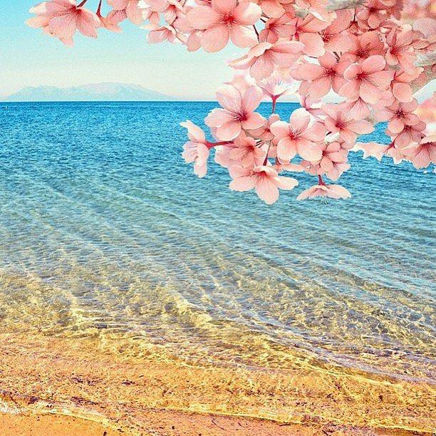 Springtime in Turkey | Photography by @bihterelis #TheGlobeWanderer